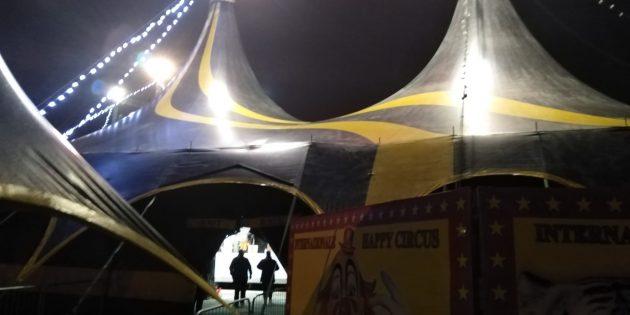 L'iniziativa di solidarietà del circo Donna Orfei per i bimbi dei Danisinni